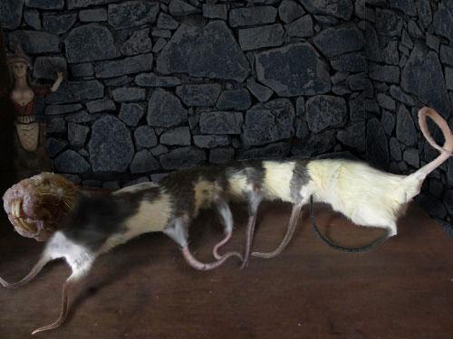 mutant rat-snake-creature